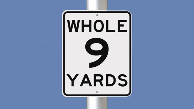 the whole nine yards download